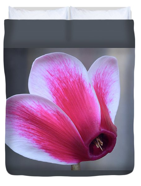 Duvet Cover featuring the photograph Cyclamen Portrait. by Terence Davis