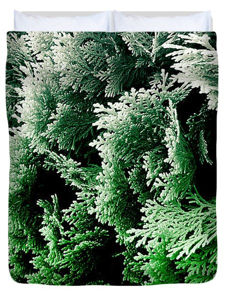 Cypress Branches No.5 Duvet Cover