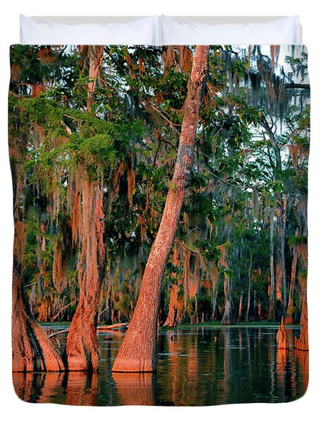 Duvet Cover featuring the photograph Cypress Grove by Nicholas Blackwell