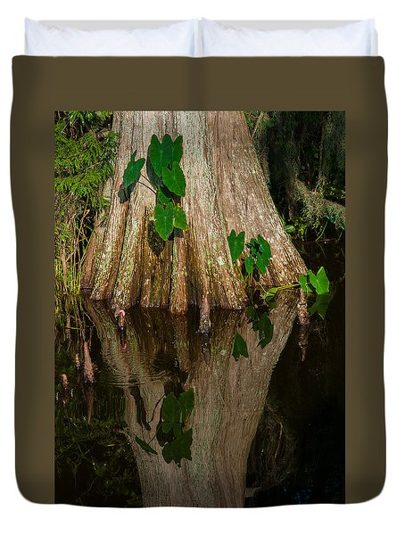 Cypress Swamp Duvet Cover by Carolyn Dalessandro