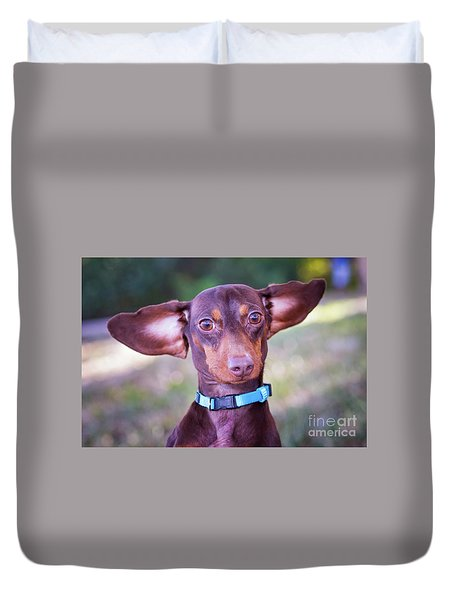 Dachshund Ears Up Duvet Cover by Stephanie Hayes