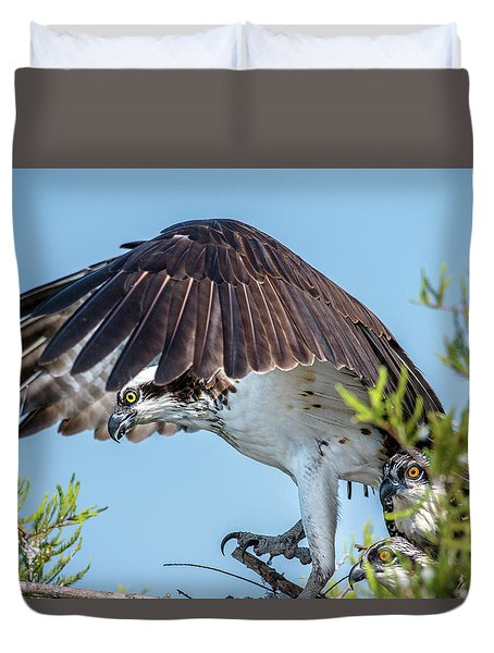 Daddy Osprey On Guard Duvet Cover