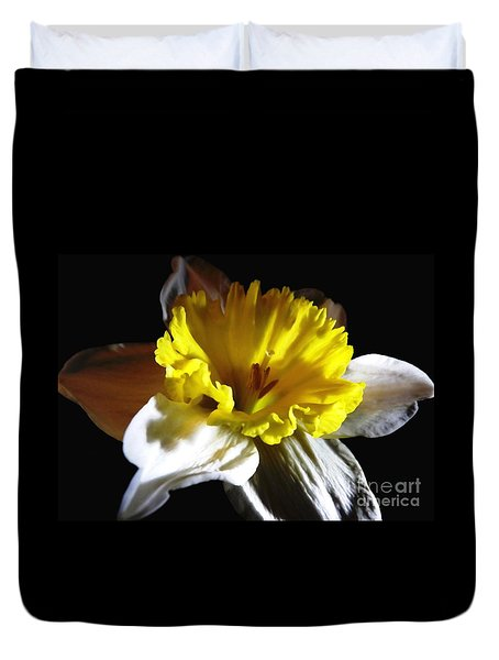 Daffodil 2 Duvet Cover by Rose Santuci-Sofranko
