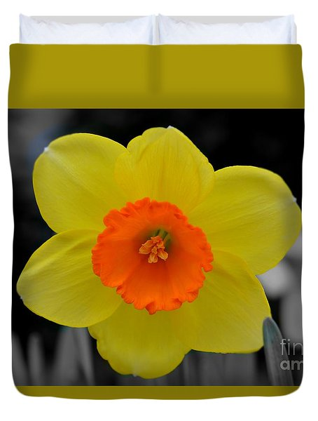 Daffodil Delight  Duvet Cover