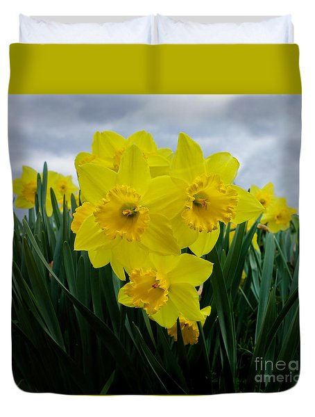 Daffodil Delight Duvet Cover by Kim Henderson