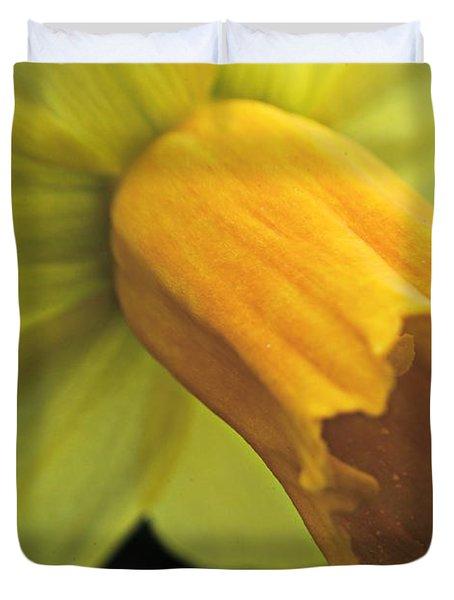 Daffodil - Narcissus - Portrait Duvet Cover