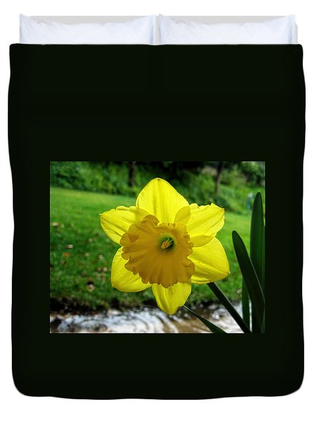 Daffodile In The Rain Duvet Cover