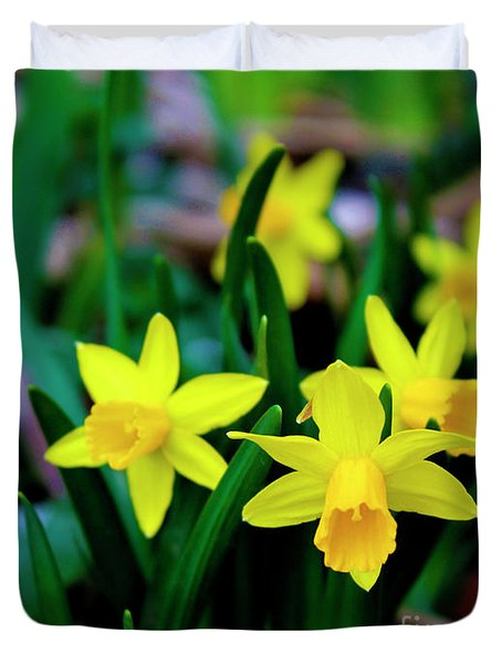 Daffodils A Symbol Of Spring Duvet Cover