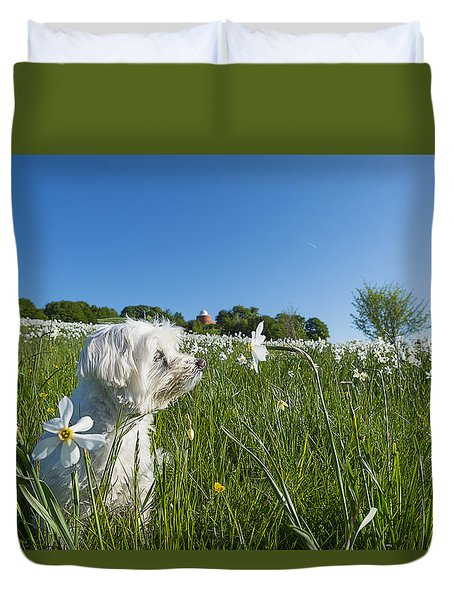 Daffodils White Blossoming With Little White Lilly 1 Duvet Cover