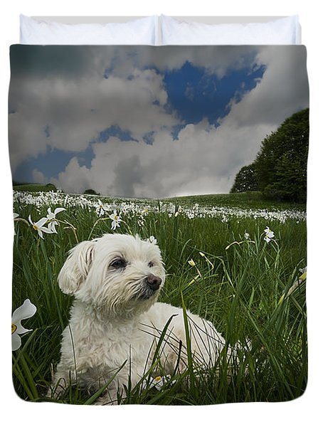 Daffodils White Blossoming With Little White Lilly 4 Duvet Cover