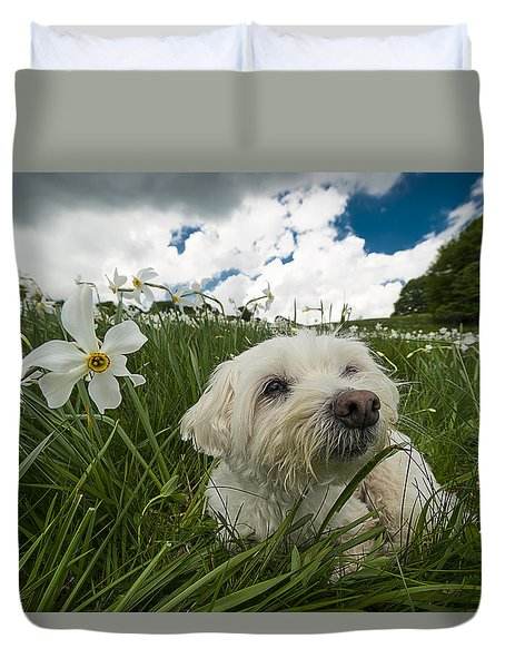 Daffodils White Blossoming With Little White Lilly 5 Duvet Cover