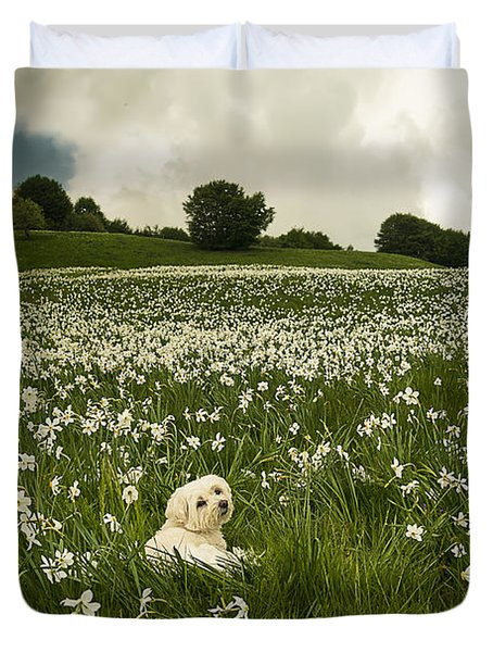 Daffodils White Blossoming With Little White Lilly 6 Duvet Cover