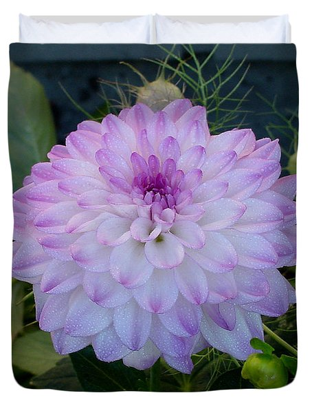 Dahlia Beautiful Duvet Cover by Shirley Heyn