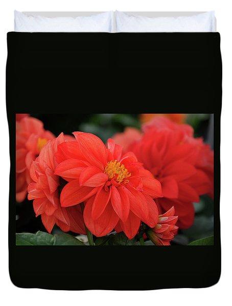 Dahlia Bloomer Duvet Cover