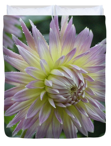 Dahlia Delight Duvet Cover by Shirley Heyn