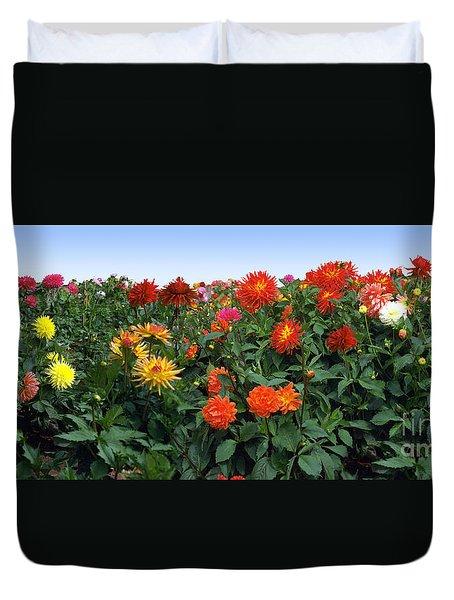 Dahlia Flower Panorama Duvet Cover