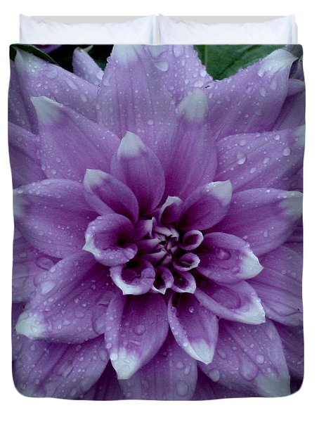 Dahlia In Rain Duvet Cover by Shirley Heyn
