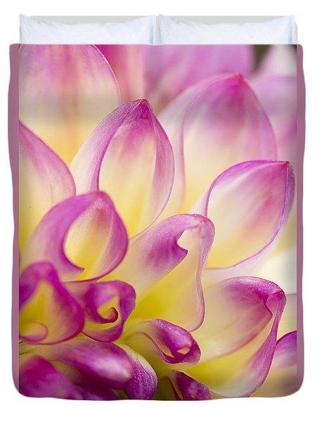 Dahlia Petals 5 Duvet Cover