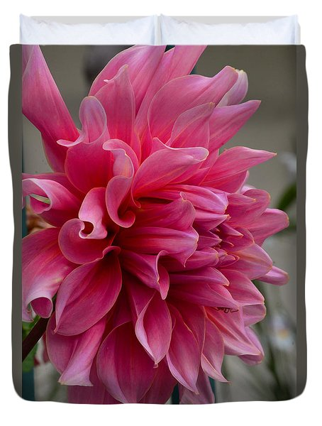 Dahlia With A Spider Surprise Duvet Cover