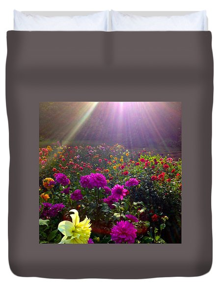 Dahlias Kissed By Sun-rays  Duvet Cover