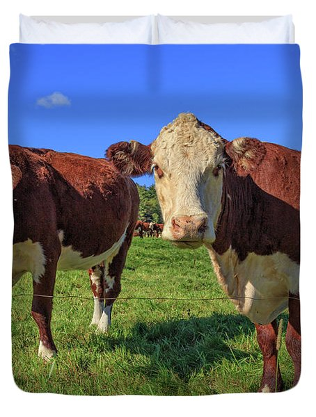 Cattle Andover New Hampshire Duvet Cover