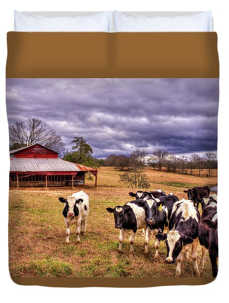 Dairy Heifer Groupies The Red Barn Art Duvet Cover
