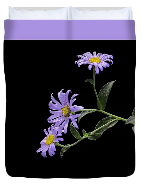 Daisies On Black Duvet Cover