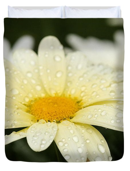 Duvet Cover featuring the photograph Daisy After Shower by Angela Rath