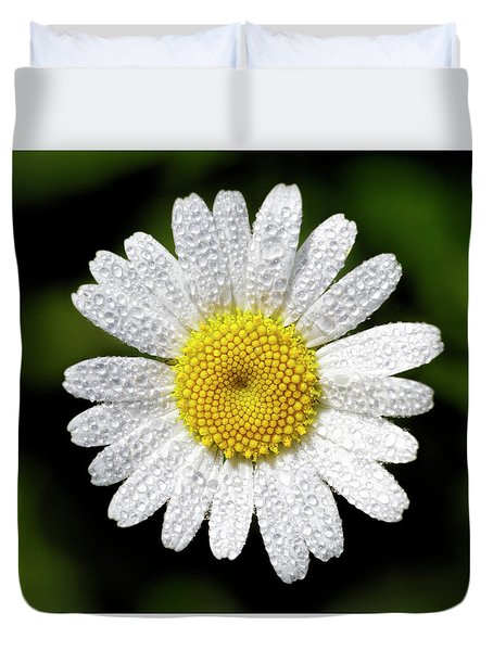 Duvet Cover featuring the photograph Daisy And Dew by Rob Graham