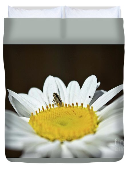 Daisy And Leafhopper Duvet Cover