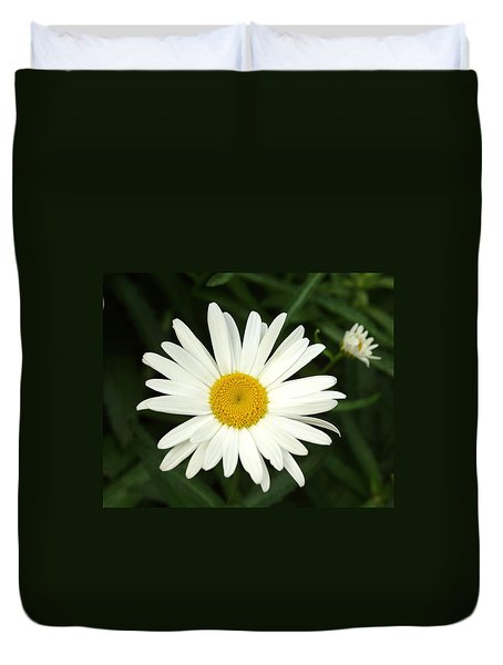 Daisy Days Duvet Cover by Carol Sweetwood