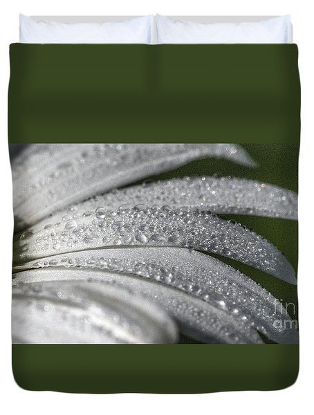 Daisy  Dewdrops Duvet Cover by Darleen Stry