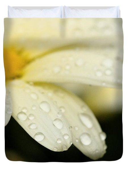 Daisy In Spring Duvet Cover by Angela Rath