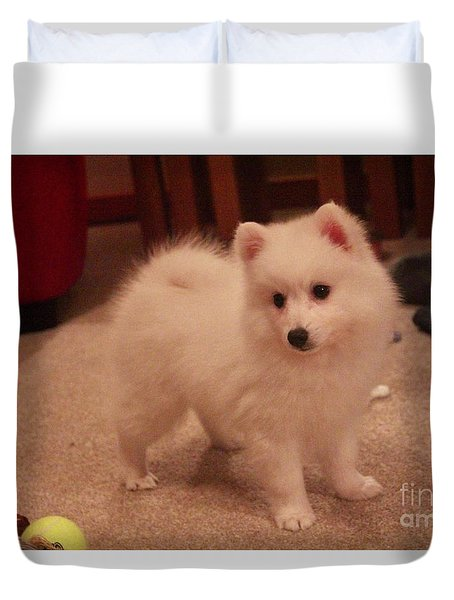 Duvet Cover featuring the photograph Daisy - Japanese Spitz by David Grant