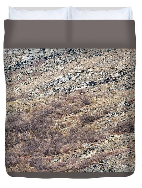 Dalls Sheep Duvet Cover by Allan Levin