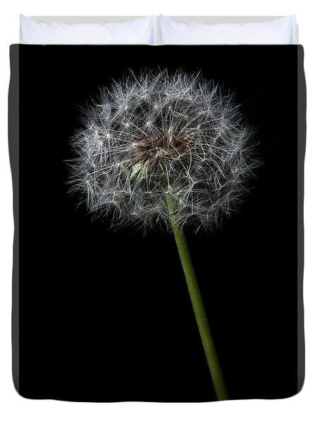 Dandelion 1 Duvet Cover