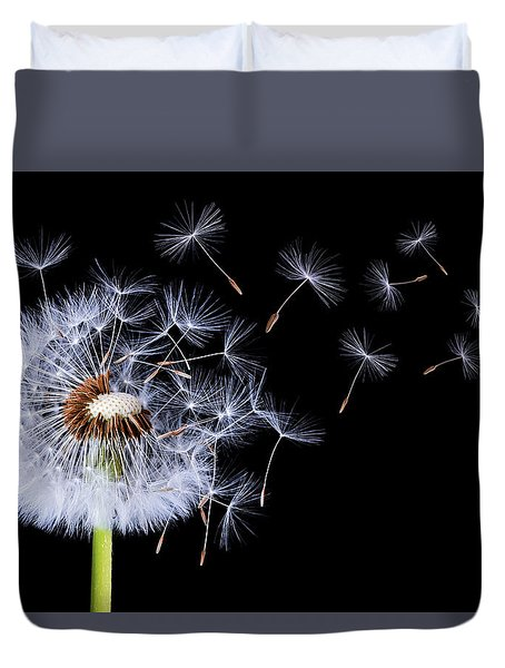 Dandelion Blowing On Black Background Duvet Cover
