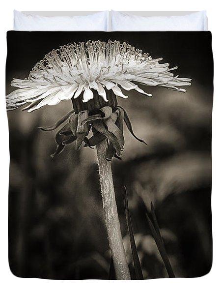 Dandelion In Black And Wite Duvet Cover