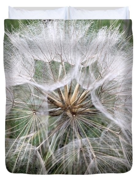 Dandelion Seed Head  Duvet Cover by Kathy Spall