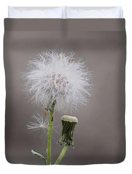 Dandelion Seed Head Duvet Cover by Rona Black