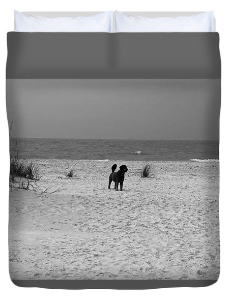 Dandy On The Beach Duvet Cover by Michiale Schneider