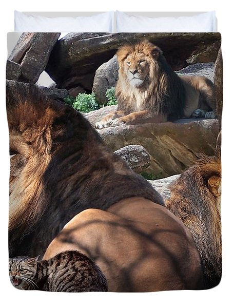 Daniel In The Lion Duvet Cover by Bill Stephens