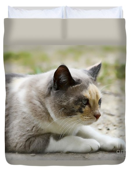 Duvet Cover featuring the photograph Danni Girl 2 by Teresa Zieba