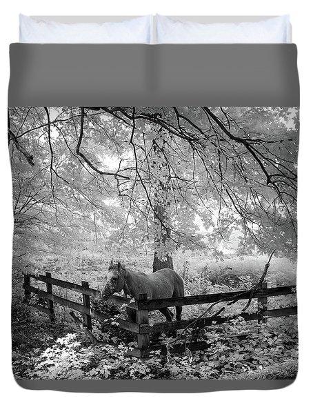 Dapple Faced Horse I Duvet Cover