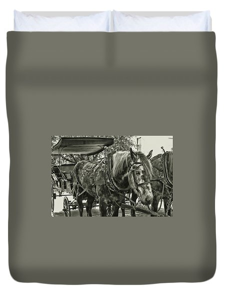 Dapple Grey Duvet Cover