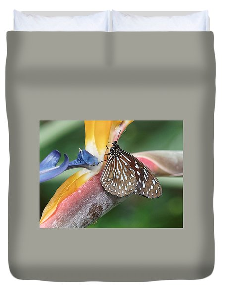 Duvet Cover featuring the photograph Dark Blue Tiger Butterfly - 1 by Paul Gulliver