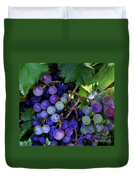 Dark Grapes Duvet Cover by Carol Sweetwood