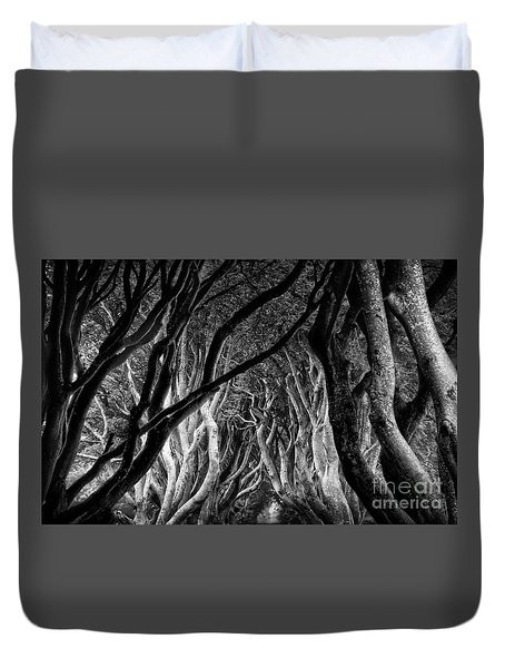 Dark Hedges Kings Road Duvet Cover