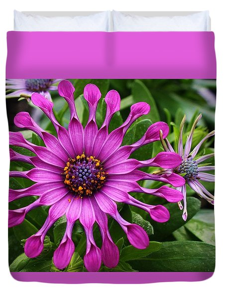 Duvet Cover featuring the photograph Daisy Of A Different Kind by Bruce Bley