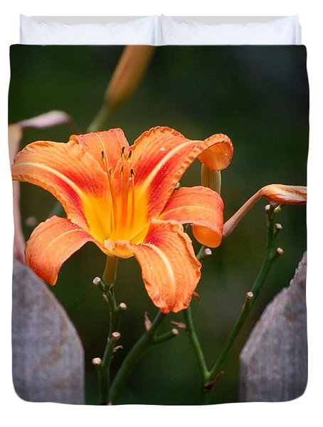 Day Lilly Fenced In Duvet Cover by David Lane